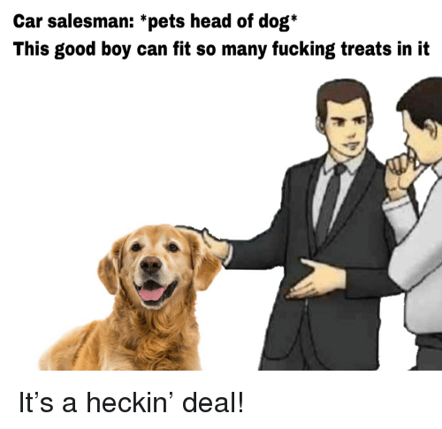 Fucking, Head, and Pets: Car salesman: *pets head of dog*  This good boy can fit so many fucking treats in it It's a heckin' deal!