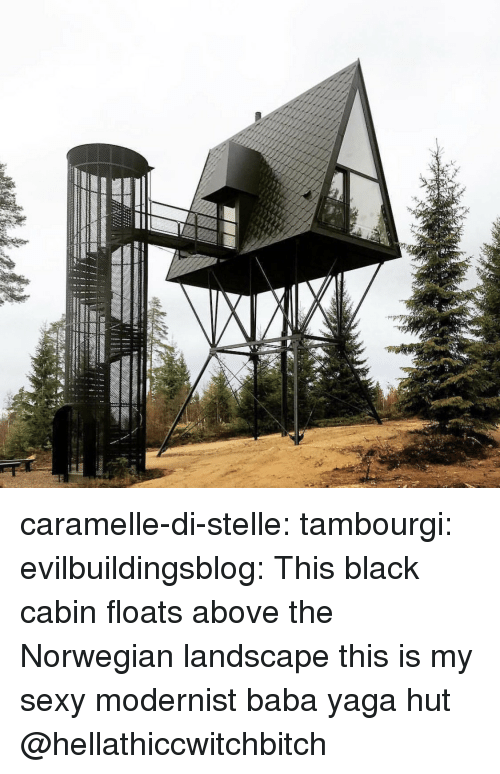 Sexy, Tumblr, and Baba: caramelle-di-stelle: tambourgi:  evilbuildingsblog: This black cabin floats above the Norwegian landscape this is my sexy modernist baba yaga hut   @hellathiccwitchbitch