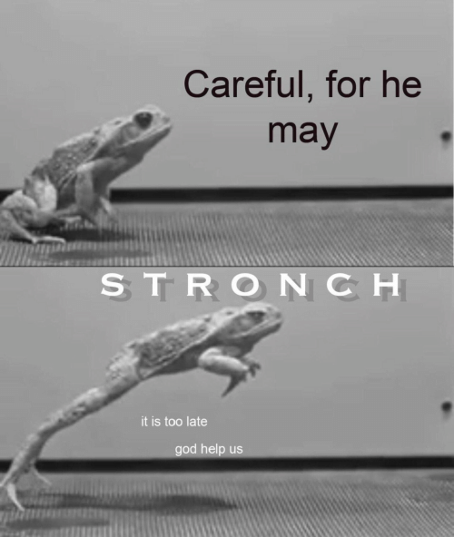 Help Us: Careful, for he  may  STRONCH  it is too late  god help us