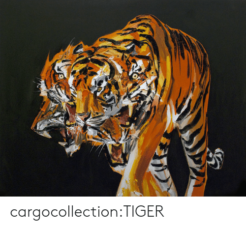 Bit: cargocollection:TIGER