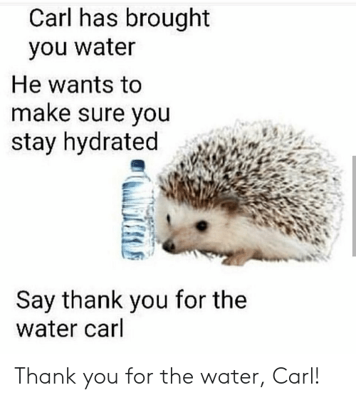 Thank You, Water, and Make: Carl has brought  you water  He wants to  make sure you  stay hydrated  Say thank you for the  water carl Thank you for the water, Carl!