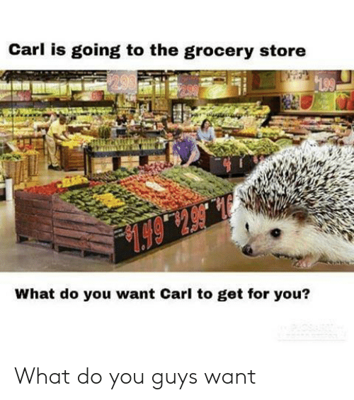 Grocery: Carl is going to the grocery store  199  .6514  What do you want Carl to get for you? What do you guys want