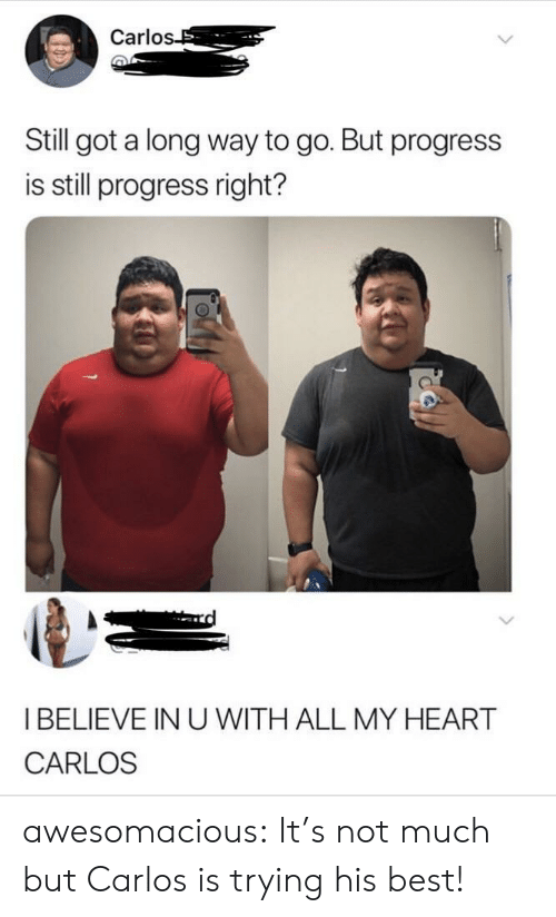 Carlo: Carlo  Still got a long way to go. But progress  is still progress right?  I BELIEVE IN U WITH ALL MY HEART  CARLOS awesomacious:  It's not much but Carlos is trying his best!