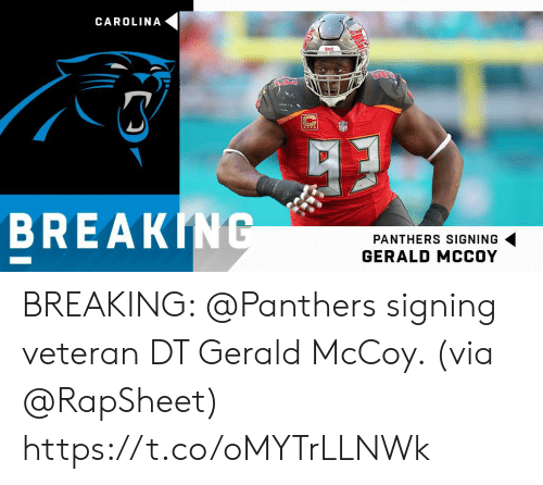 Memes, Panthers, and 🤖: CAROLINA  8ECS  BREAKING  PANTHERS SIGNING  GERALD MCCOY BREAKING: @Panthers signing veteran DT Gerald McCoy. (via @RapSheet) https://t.co/oMYTrLLNWk