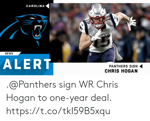 Memes, News, and Panthers: CAROLINA  NEWS  ALERT  PANTHERS SIGN  CHRIS HOGAN .@Panthers sign WR Chris Hogan to one-year deal. https://t.co/tkI59B5xqu