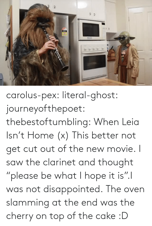 "Get Cut: carolus-pex:  literal-ghost:  journeyofthepoet:  thebestoftumbling:    When Leia Isn't Home (x)  This better not get cut out of the new movie.  I saw the clarinet and thought ""please be what I hope it is"".I was not disappointed.   The oven slamming at the end was the cherry on top of the cake :D"