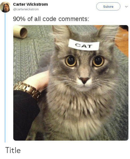 Cat, Code, and All: Carter Wickstrom  Suivre  @carterwickstrom  90% of all code comments:  CAT Title