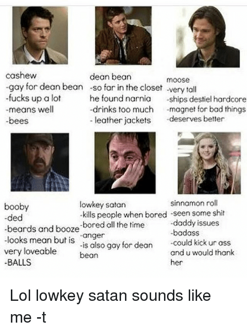 """cashews: cashew  dean bean  moose  -gay for dean bean -so far in the closet very tall  -fucks up a lot  he found narnia  ships destiel hardcore  drinks too much  magnet for bad things.  means well  leather jackets  deserves better  -bees  sinnamon roll  lowkey satan  booby  -kills people when bored -seen some shit  -ded  -daddy issues  beards and booze  -bored all the  time  looks mean but is  """"anger  could kick ur ass  very is also gay for dean  and u would thank  loveable  bean  BALLS  her Lol lowkey satan sounds like me -t"""