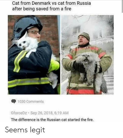 Denmark: Cat from Denmark vs cat from Russia  after being saved from a fire  1030 Comments  GforceDz Sep 26, 2018, 6:19 AM  The difference is the Russian cat started the fire. Seems legit