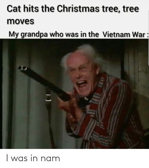 moves: Cat hits the Christmas tree, tree  moves  My grandpa who was in the Vietnam War: I was in nam