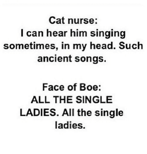 single ladies: Cat nurse:  l can hear him singing  sometimes, in my head. Such  ancient songs.  Face of Boe:  ALL THE SINGLE  LADIES. All the single  ladies.