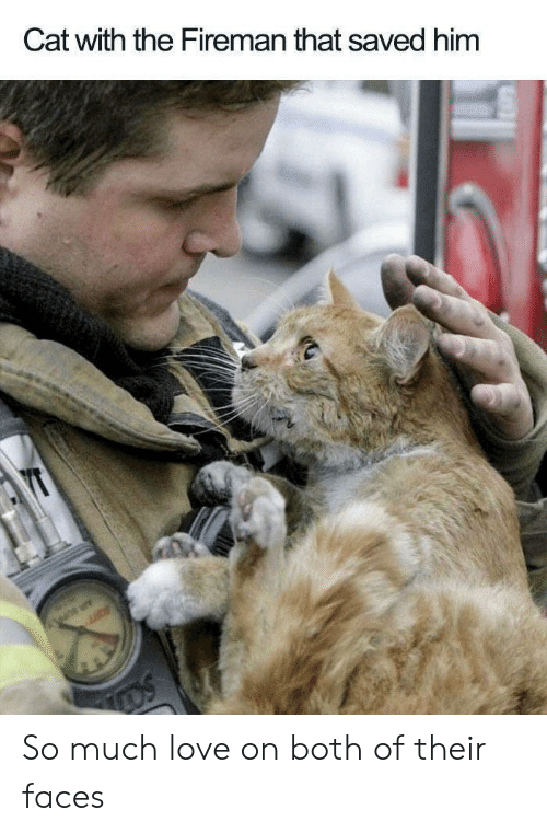 Love, Cat, and Him: Cat with the Fireman that saved him  YT  Li  OS So much love on both of their faces