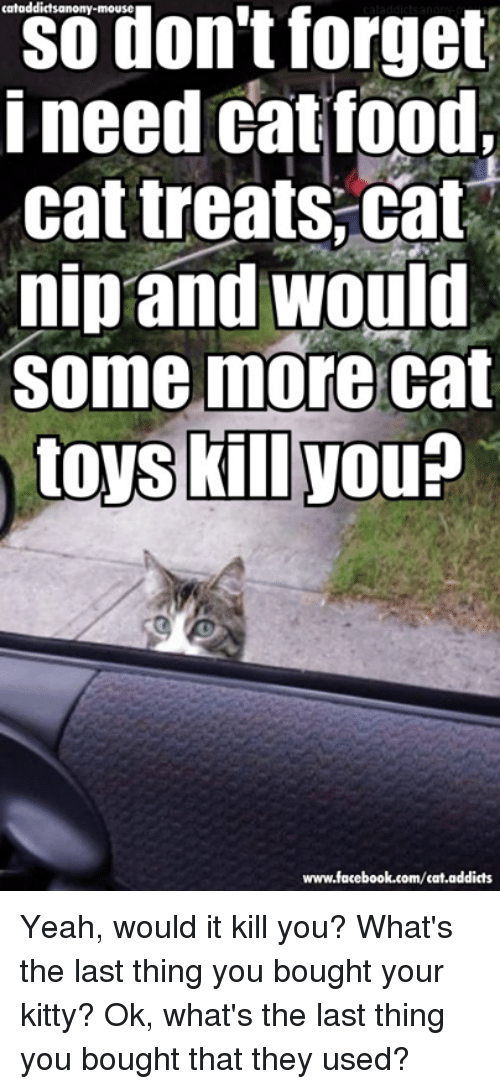 Food Cat: cataddictsanony-mouse  forget  don't i need cat food,  cat treats Cat  nip and would  Some more cat  toys kill Nou  www.facebook.com/cat.addicts Yeah, would it kill you? What's the last thing you bought your kitty? Ok, what's the last thing you bought that they used?