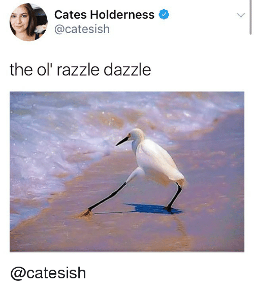 ols: Cates Holderness  @catesish  the ol' razzle dazzle @catesish
