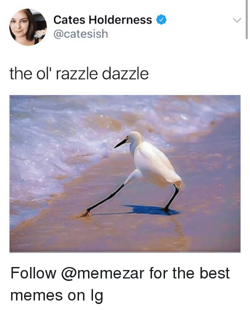 Memes, Best, and Dank Memes: Cates Holderness  @catesish  the ol' razzle dazzle Follow @memezar for the best memes on Ig