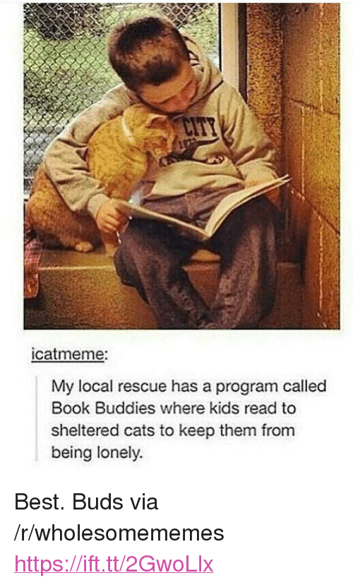 "Cats, Best, and Book: catmeme:  My local rescue has a program called  Book Buddies where kids read to  sheltered cats to keep them from  being lonely. <p>Best. Buds via /r/wholesomememes <a href=""https://ift.tt/2GwoLlx"">https://ift.tt/2GwoLlx</a></p>"