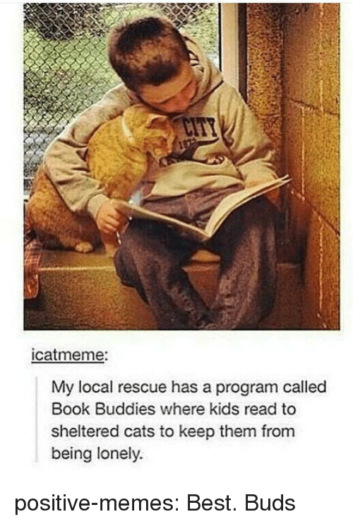 Cats, Memes, and Target: catmeme:  My local rescue has a program called  Book Buddies where kids read to  sheltered cats to keep them from  being lonely. positive-memes:  Best. Buds
