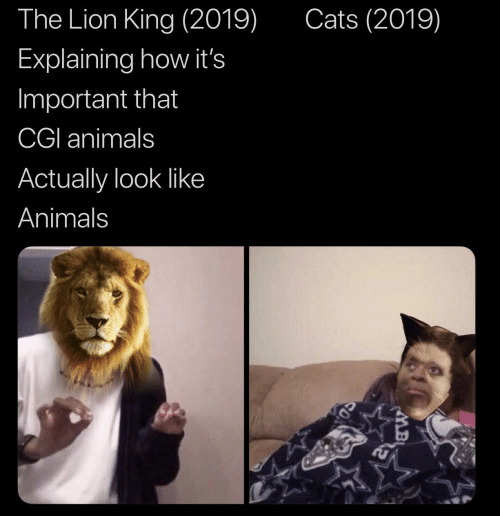 Lion King: Cats (2019)  The Lion King (2019)  Explaining how it's  Important that  CGI animals  Actually look like  Animals