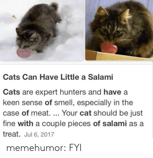 Cats, Smell, and Tumblr: Cats Can Have Little a Salami  Cats are expert hunters and have a  keen sense of smell, especially in the  case of meat. ... Your cat should be just  fine with a couple pieces of salami as a  treat. Jul 6, 2017 memehumor:  FYI
