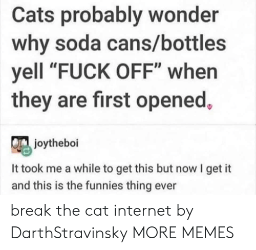 "soda: Cats probably wonder  why soda cans/bottles  yell ""FUCK OFF"" when  they are first opened,  joytheboi  It took me a while to get this but now I get it  and this is the funnies thing ever break the cat internet by DarthStravinsky MORE MEMES"