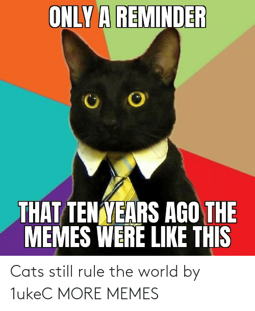 Cats: Cats still rule the world by 1ukeC MORE MEMES