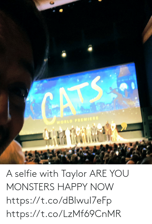 premiere: CATS  WORLD PREMIERE A selfie with Taylor ARE YOU MONSTERS HAPPY NOW https://t.co/dBIwuI7eFp https://t.co/LzMf69CnMR