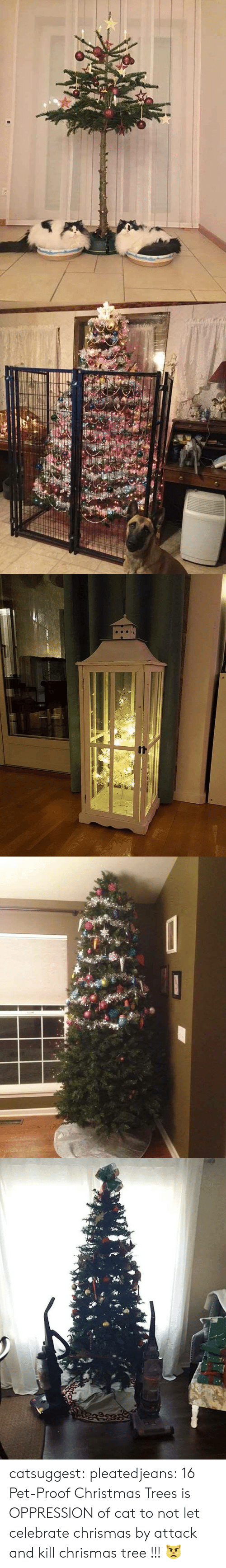 Christmas, Tumblr, and Blog: catsuggest:  pleatedjeans: 16 Pet-Proof Christmas Trees  is OPPRESSION of cat to not let celebrate chrismas by attack and kill chrismas tree !!! 😾