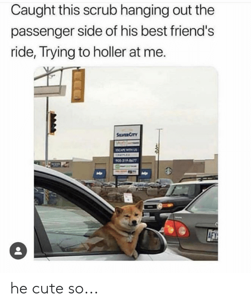 Cute, Dank, and Friends: Caught this scrub hanging out the  passenger side of his best friend's  ride, Trying to holler at me.  SaVER CITY  BCAPE  ONELE  PO5-319-8677  AFY he cute so...