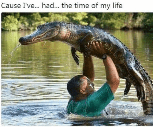 Dank, Life, and Time: Cause Ive... had... the time of my life