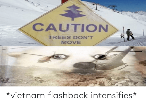 caution: CAUTION  TREES DON'T  MOVE *vietnam flashback intensifies*