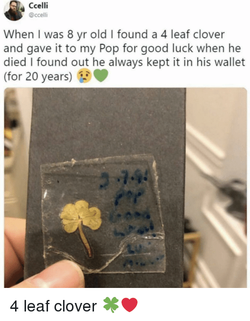 clover: Ccelli  @ccelli  When I was 8 yr old I found a 4 leaf clover  and gave it to my Pop for good luck when he  died I found out he always kept it in his wallet  (for 20 years) 4 leaf clover 🍀❤️