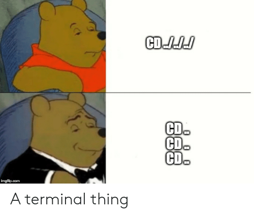 Com, Terminal, and Thing: CDJJd  CD.  CD  CD.  imgflip.com A terminal thing