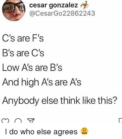 Memes, 🤖, and Who: cesar  gonzalez  @CesarGo22862243  C's are F's  B's are C's  Low A's are B's  And high A's are A's  Anybody else think like this? I do who else agrees 😩