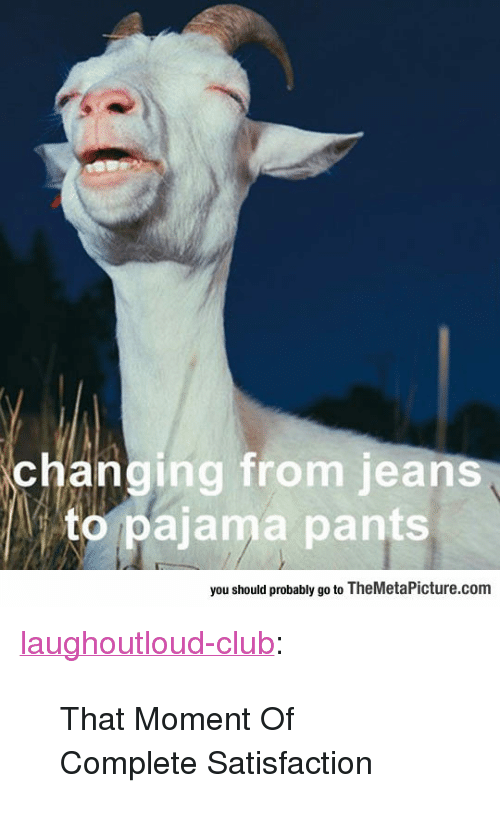 """Club, Tumblr, and Blog: changing from jeans  to pajama pants  you should probably go to TheMetaPicture.com <p><a href=""""http://laughoutloud-club.tumblr.com/post/166854423398/that-moment-of-complete-satisfaction"""" class=""""tumblr_blog"""">laughoutloud-club</a>:</p>  <blockquote><p>That Moment Of Complete Satisfaction</p></blockquote>"""