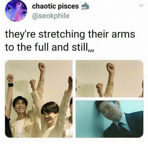 Pisces: chaotic pisces  @seokphile  they're stretching their arms  to the full and stil,  $10