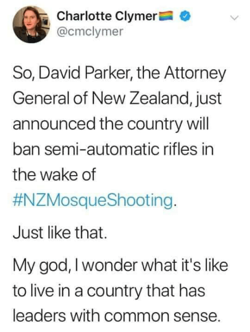 God, Memes, and Charlotte: Charlotte Clymer  @cmclymer  So, David Parker, the Attorney  General of New Zealand, just  announced the country will  ban semi-automatic rifles in  the wake of  #NZMosqueShooting.  Just like that.  My god, I wonder what it's like  to live in a country that has  leaders with common sense.