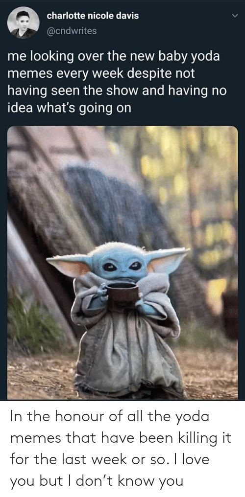 Memes That: charlotte nicole davis  @cndwrites  me looking over the new baby yoda  memes every week despite not  having seen the show and having no  idea what's going on In the honour of all the yoda memes that have been killing it for the last week or so. I love you but I don't know you