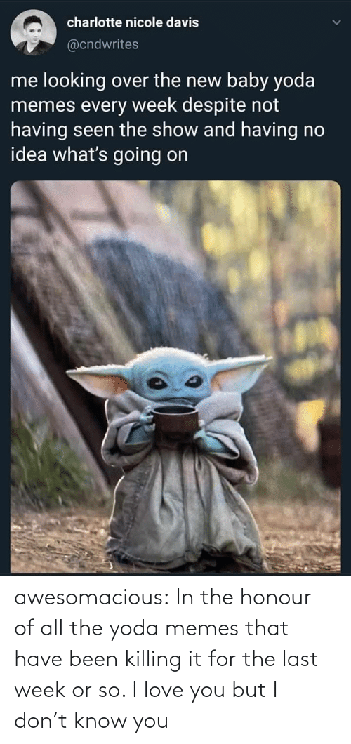 davis: charlotte nicole davis  @cndwrites  me looking over the new baby yoda  memes every week despite not  having seen the show and having no  idea what's going on awesomacious:  In the honour of all the yoda memes that have been killing it for the last week or so. I love you but I don't know you