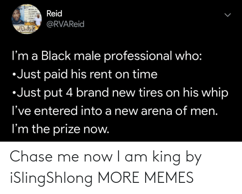 Now I: Chase me now I am king by iSlingShlong MORE MEMES