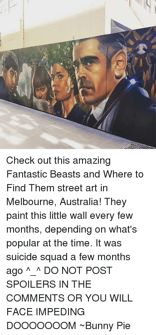 Bunnies, Memes, and Paintings: Check out this amazing Fantastic Beasts and Where to Find Them street art in Melbourne, Australia!  They paint this little wall every few months, depending on what's popular at the time.  It was suicide squad a few months ago ^_^ DO NOT POST SPOILERS IN THE COMMENTS OR YOU WILL FACE IMPEDING DOOOOOOOM ~Bunny Pie