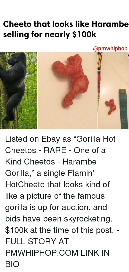 "Harambism: Cheeto that looks like Harambe  selling for nearly $100k  Capmwhiphop Listed on Ebay as ""Gorilla Hot Cheetos - RARE - One of a Kind Cheetos - Harambe Gorilla,"" a single Flamin' HotCheeto that looks kind of like a picture of the famous gorilla is up for auction, and bids have been skyrocketing. $100k at the time of this post. - FULL STORY AT PMWHIPHOP.COM LINK IN BIO"