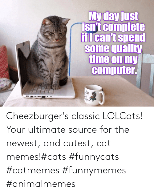 source: Cheezburger's classic LOLCats! Your ultimate source for the newest, and cutest, cat memes!#cats #funnycats #catmemes #funnymemes #animalmemes