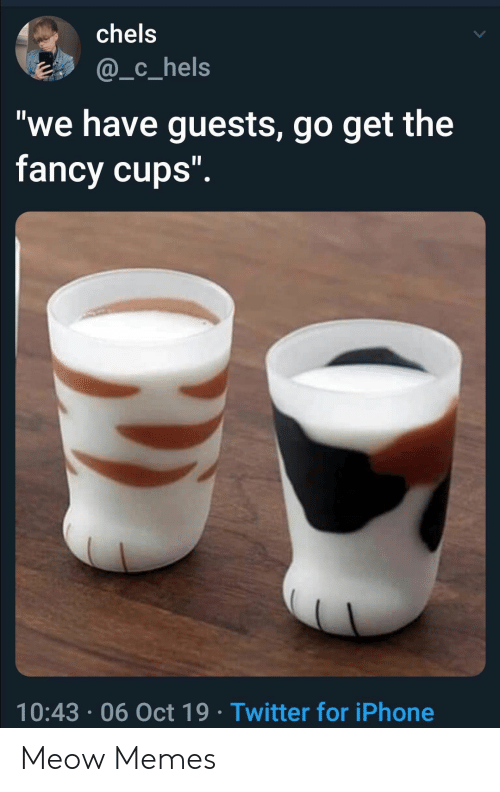 "Iphone, Memes, and Twitter: chels  @_c_hels  ""we have guests, go get the  fancy cups"".  10:43 06 Oct 19 Twitter for iPhone Meow Memes"