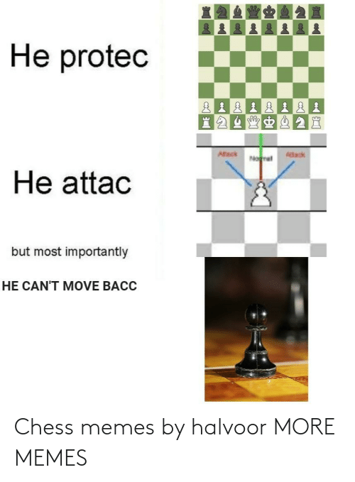 Chess: Chess memes by halvoor MORE MEMES