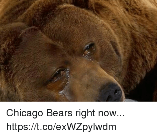 Chicago, Chicago Bears, and Bears: Chicago Bears right now... https://t.co/exWZpylwdm