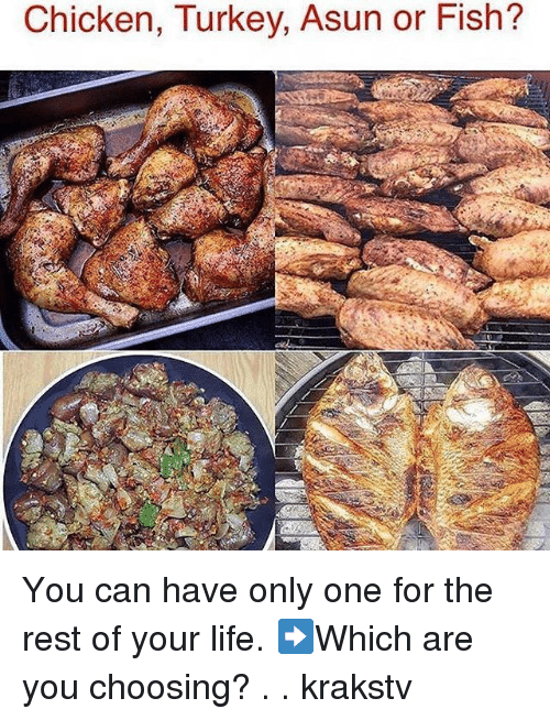 Turkeyism: Chicken, Turkey. Asun or Fish? You can have only one for the rest of your life. ➡️Which are you choosing? . . krakstv