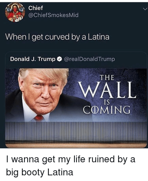 Booty, Funny, and Life: Chief  OChiefSmokesMid  When I get curved by a Latina  Donald J. Trump  @realDonaldTrump  THE  WALL  IS  CⓛMING I wanna get my life ruined by a big booty Latina