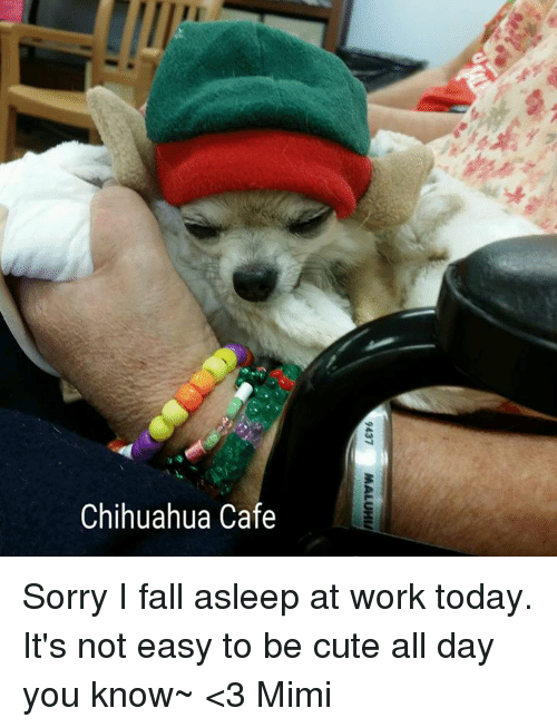 How to not fall asleep at work