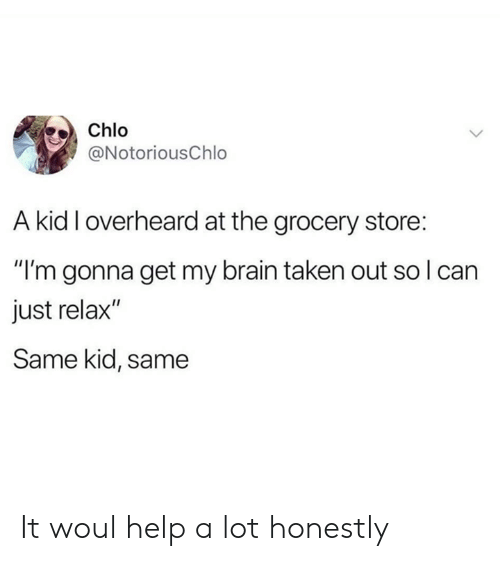 "Dank, Taken, and Brain: Chlo  @NotoriousChlo  A kid I overheard at the grocery store:  ""I'm gonna get my brain taken out so I can  just relax""  Same kid, same It woul help a lot honestly"