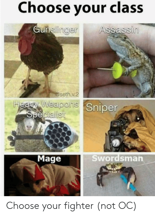 weapons: Choose your class  Gunelinger  Assassin  seth.v.2  Heary Weapons Sniper  Specialist  Swordsman  Mage Choose your fighter (not OC)